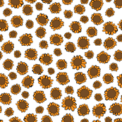 Orange Sunflowers on White