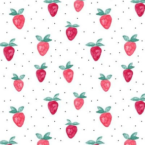 watercolor strawberries    dots bold