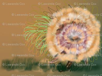 Wildflower elion bloom