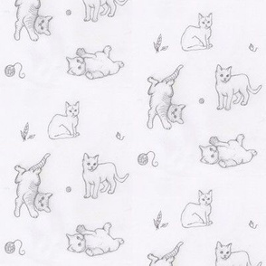 Playful Kittens Rough Sketch