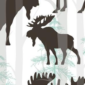 moose big size