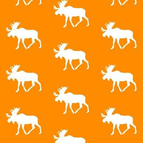 moose on orange (small scale) || the great outdoors collection