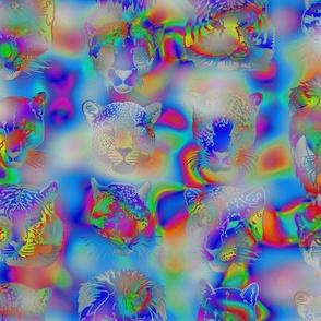 kickass_kitties_-_psychedelic