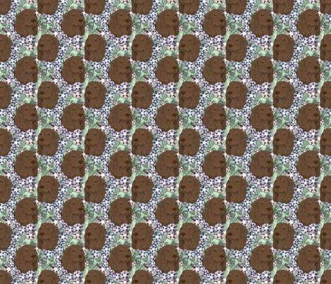 Rusticcorgiboykinspanielfloralportrait02_shop_preview