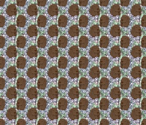 Floral Boykin spaniel portraits - small fabric by rusticcorgi on Spoonflower - custom fabric