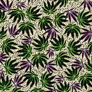 Sativa-Indica Jumble