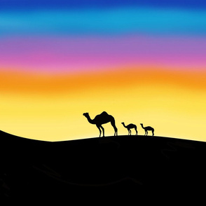Momma Camel