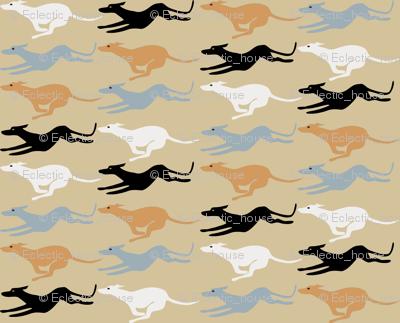 Desert Greyhounds