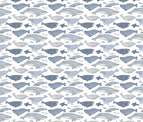 Whales fabric by studiotuesday on Spoonflower - custom fabric