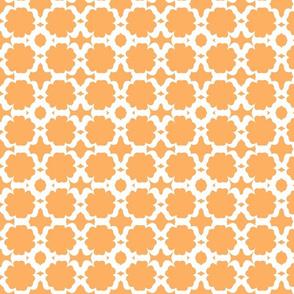 Morocco Garden- tangerine