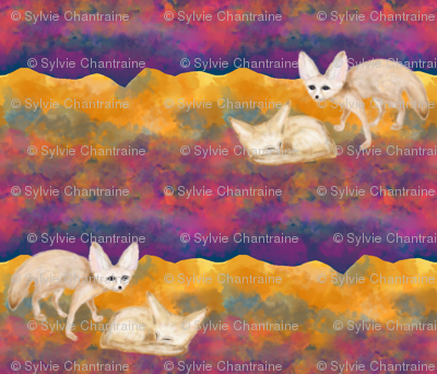 SAND FOXES IN THE DESERT AT NIGHT SAHARA FENNEC