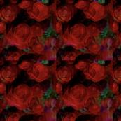 Elegant Crimson Rose
