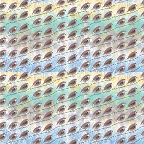 CHUKAR_BIRDS--05