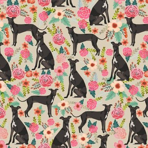 italian greyhound florals fabric best dogs and flowers design - tan