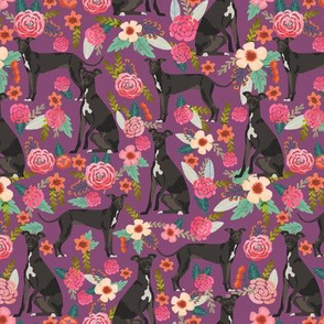 italian greyhound florals fabric best dogs and flowers design - amethyst