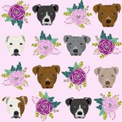 Rpitbull_mixed_florals_purple_light_shop_thumb