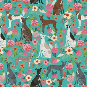 italian greyhound florals fabric best dogs and flowers design -turquoise