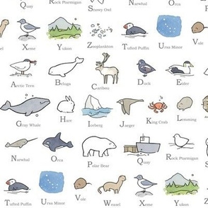 Arctic Alphabet Pattern