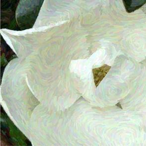 magnolia_gauche