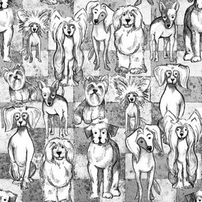 Sketched Dogs