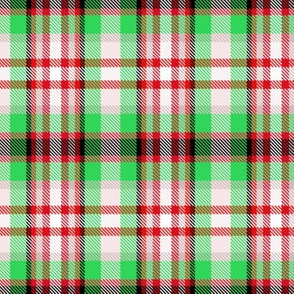 Coolest Green + Red Plaid by Su_G