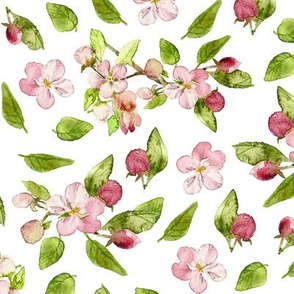 apple blossom watercolor print