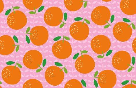 Giant_oranges_aw_200dpi_new-01_shop_preview