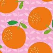 Giant_oranges_aw_200dpi_new-01_shop_thumb
