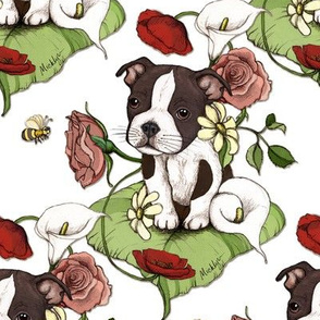 Boston Terrier Puppy Posie with flowers and bees on white