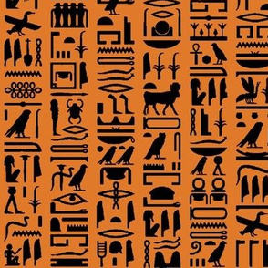 Egyptian Hieroglyphics on Orange // Small
