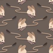 Cute long-eared jerboa