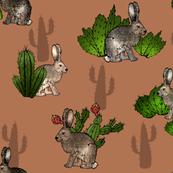 Cacti and Jackrabbits