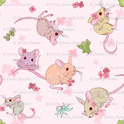 Desert mices