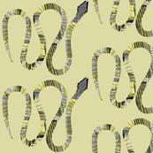 Snake sneaky.....