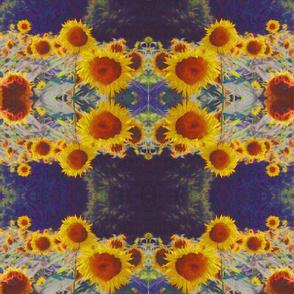 sunny_sunflowers_1