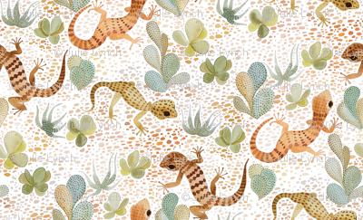 painted desert gecko