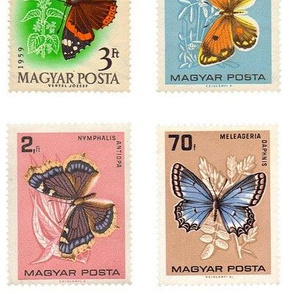 butterfly postage stamps from Hungary, extra-large  on white