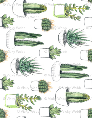 Watercolour Cacti & Succulents - Large - Rotated