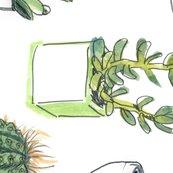 6106568_watercolour_cacti___succulent_-_4500_shop_thumb