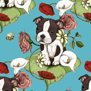 Boston Terrier Puppy Posie with flowers and bees on teal