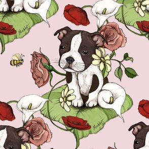 Boston Terrier Puppy Posie with flowers and bees on pink