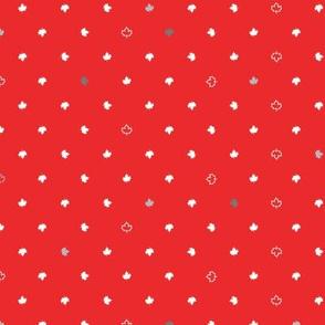 Maple Dot, Flag