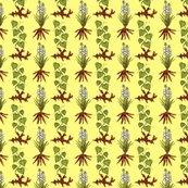 Yellow_yucca_yam_4x4_shop_thumb