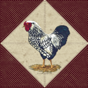 Silver Laced Wyandotte Rooster Barn Red