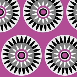 purple black daisy