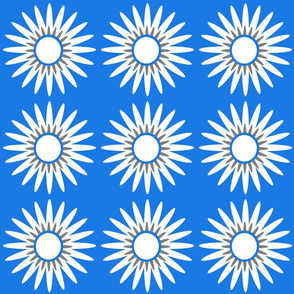 royal daisy