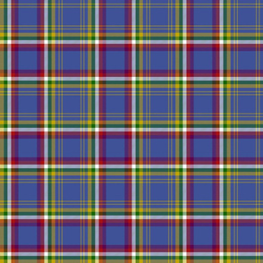 "Yukon province official tartan, 6"" dark"