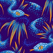 Mr Snake in the Rainforest - Blue Orange