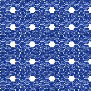 Blue Hexagon Blockprint