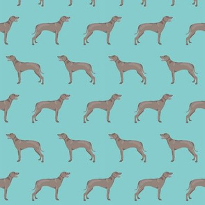 weimaraner dog fabric simple dog design  - light blue